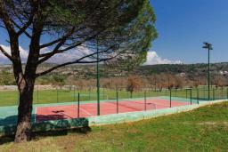 Территория. Черногория, Кримовица : Прекрасная вилла с бассейном и зеленой территорией, 4 спальни, 2 ванные комнаты, парковка, Wi-Fi