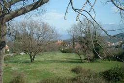 Территория. Черногория, Радовичи : Прекрасный дом с бассейном и зеленым двориком с барбекю, 4 спальни, 2 ванные комнаты, парковка