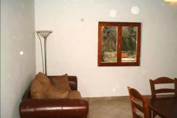 Гостиная. Черногория, Радовичи : Прекрасный дом с бассейном и зеленым двориком с барбекю, 4 спальни, 2 ванные комнаты, парковка