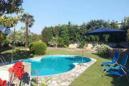 Бассейн. Черногория, Бар : Прекрасная вилла с бассейном и зеленым двориком с барбекю, 4 спальни, 2 ванные комнаты, парковка, Wi-Fi
