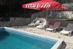 Бассейн. Черногория, Герцег-Нови : Прекрасная вилла с бассейном и двориком с барбекю, 4 спальни, 2 ванные комнаты, парковка, Wi-Fi