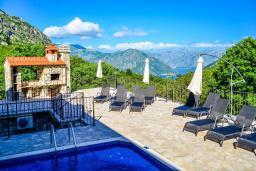 Бассейн. Черногория, Моринь : Прекрасная вилла в комплексе с бассейном и зеленой территорией, 2 спальни, парковка, Wi-Fi