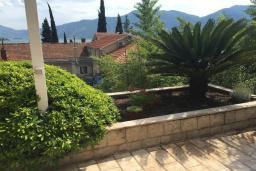 Территория. Черногория, Ораховац : Прекрасная вилла с бассейном и патио с видом на море, 20 метров до пляжа, 2 спальни, парковка, Wi-Fi