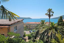 Seaview. Montenegro, Herceg-Novi : Apartment with 1 bedroom in Herceg-Novi