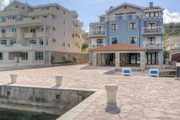 Ближайший пляж. Черногория, Обала Джурашевича : Уникальная вилла на берегу залива, 9 спален, 8 ванных комнаты, парковка, Wi-Fi