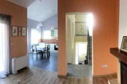 Кухня. Черногория, Радовичи : Прекрасная вилла с зеленым двориком недалеко от пляжа, 4 спальни, 3 ванные комнаты, барбекю, парковка, Wi-Fi