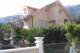 Фасад дома. Черногория, Зеленика : Прекрасный дом с зеленым двориком, 5 спален, 2 ванные комнаты, 2 кухни, парковка, Wi-Fi