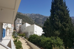 Вид. Черногория, Бечичи : Апартамент в 200 метрах от пляжа, с гостиной, отдельной спальней и террасой