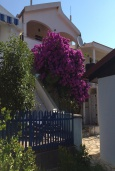 Фасад дома. Черногория, Утеха : Двухэтажная вилла с зеленым двориком, 4 спальни, 2 ванные комнаты, парковка