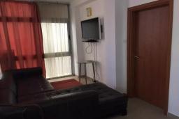 Гостиная. Черногория, Рафаиловичи : Современный апартамент с гостиной, двумя спальнями и террасой