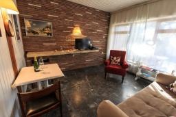 Гостиная. Черногория, Рафаиловичи : Уютный дом с зеленым двориком в 50 метрах от пляжа, 2 спальни, Wi-Fi