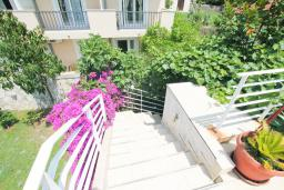 Лестница наверх. Черногория, Герцег-Нови : Студия в Топла рядом с пляжем Раффаэло