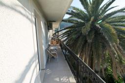Балкон. Черногория, Игало : Апартамент с отдельной спальней, с балконом, 100 метров до пляжа