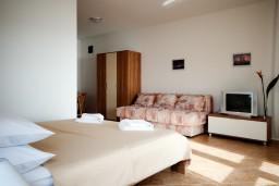 Studio (living room & kitchen). Montenegro, Herceg-Novi : Studio in Herceg-Novi