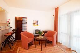 Гостиная. Черногория, Герцег-Нови : Апартамент Магнолия в Савина