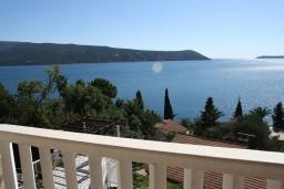 Вид на море. Черногория, Герцег-Нови : Апартамент Магнолия в Савина