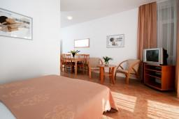 Living room. Montenegro, Herceg-Novi : Apartment with 2 bedrooms in Herceg-Novi