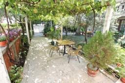 Черногория, Игало : Студия на первом этаже с террасой под виноградными лозами
