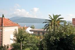 Вид на море. Черногория, Герцег-Нови : Студия с большим зелёным садом и видом на море, 60 метров до пляжа