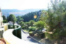 Вид. Черногория, Игало : Люкс апартамент с гостиной, кухней, отдельной спальней и балконом. Есть стиральная машина.