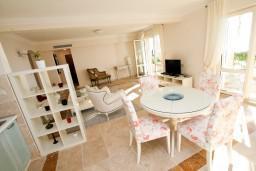 Living room. Montenegro, Sveti Stefan : Apartment with 1 bedroom in Sveti Stefan