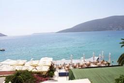 Вид на море. Черногория, Герцег-Нови : Апартамент с отдельной спальней, с балконом и видом на море