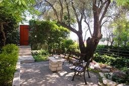 Территория. Черногория, Бечичи : Дом в Бечичи с 5-ю спальнями, с закрытой территорией с садом и бассейном и крытой террасой.