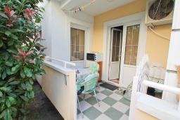 Терраса. Черногория, Рафаиловичи : Полностью оборудованный апартамент со стиральной и посудомоечной машиной, террасой, в 2 минутах от пляжа Рафаиловичи