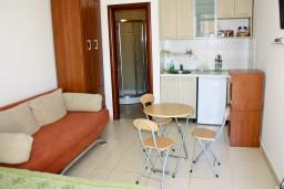 Studio (living room & kitchen). Montenegro, Becici : Apartment with 1 bedroom in Becici