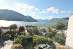 Вид. Черногория, Доброта : Апартаменты с отдельной спальней, с террасой с шикарным видом на море, 30 метров от пляжа