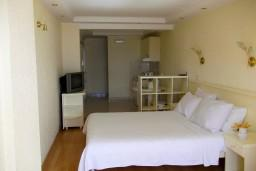 Студия (гостиная+кухня). Черногория, Герцег-Нови : Студия с видом на море, 100 метров от пляжа
