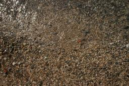 Пляж Фанфани / Fanfani в Дженовичи