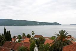 Вид. Черногория, Герцег-Нови : Апартамент с шикарным видом на море в Савина