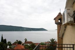 Вид на море. Черногория, Герцег-Нови : Апартамент в Савина с шикарным видом на море