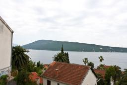 Вид. Черногория, Герцег-Нови : Студия в Савина с шикарным видом на море