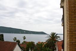 Вид на море. Черногория, Герцег-Нови : Студия в Савина с шикарным видом на море