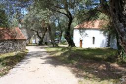 Прочее. Черногория, Жанице / Мириште : Каменный домик в национальном Черногорском стиле со своим приватным двориком, летней кухней, с 4-мя спальнями, 2 ванными комнатами, до чистейшего галечного пляжа Жанице 100 метров.