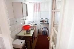Кухня. Черногория, Игало : Большая студия с террасой