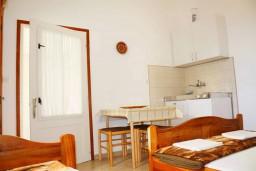 Черногория, Баошичи : Студия для 3 человек с террасой и видом на сад