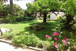 Территория. Черногория, Игало : Дом с шикарным зелёным садом с гостиной,  с 4-мя спальнями, 4-мя ванными комнатами,  с кухней, стиральной машинкой, Wi-Fi, расположен на самом берегу моря в Игало, на территории дома лежаки, барбекю.