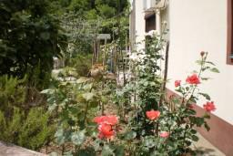 Дом в  Херцег-Нови – Суторина, площадью 200м2, на земельном участке площадью 800м2. Два апартамента каждый площадью по 100м2. в Игало