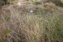 Земельный участок в Герцег-Нови – Нивице, площадью 400м2, на самом берегу моря. Прилагается вся необходимая документация о предназначении земельного участка, где предусмотрено строительство  жилого объекта с коэффициентом застройки 0,8. в Нивице
