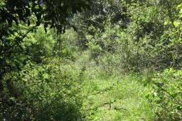 Урбанизованный земельный участок в Герцег-Нови – Суторина, площадью 1056м2. К участку подведено электричество, вода, телефон, дорога.    в Игало