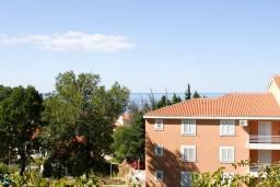 Вид. Черногория, Петровац : Комната для 2-3 человек, с балконом с видом на море