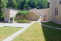 Территория. Черногория, Риека Режевичи : Прекрасная вилла с бассейном и зеленым двориком с барбекю, 3 спальни, 3 ванные комнаты, парковка, Wi-Fi