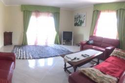 Living room. Montenegro, Krasici : House with 4 bedrooms in Krasici for 8 guests