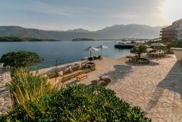 Территория. Черногория, Обала Джурашевича : Комплекс из двух роскошных вилл с бассейном и частным пляжем, 9 спален, 10 ванных комнат, парковка, Wi-Fi