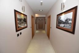 Черногория, Игало : Современный апартамент с отдельной спальней