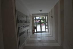 Черногория, Игало : Современный апартамент с отдельной спальней и балконом с видом на море