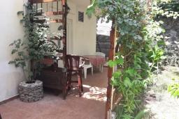Территория. Черногория, Будва : Уютная вилла с бассейном и зеленым двориком с барбекю, 5 спален, 5 ванных комнат, парковка, Wi-Fi